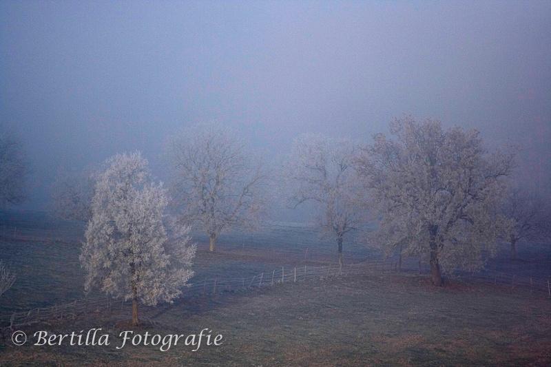 landschapsfotografie-2