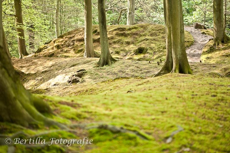 landschapsfotografie-33