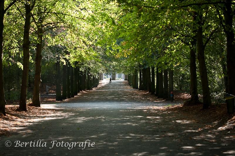 landschapsfotografie-44