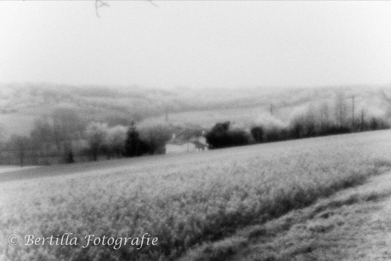 landschapsfotografie-63